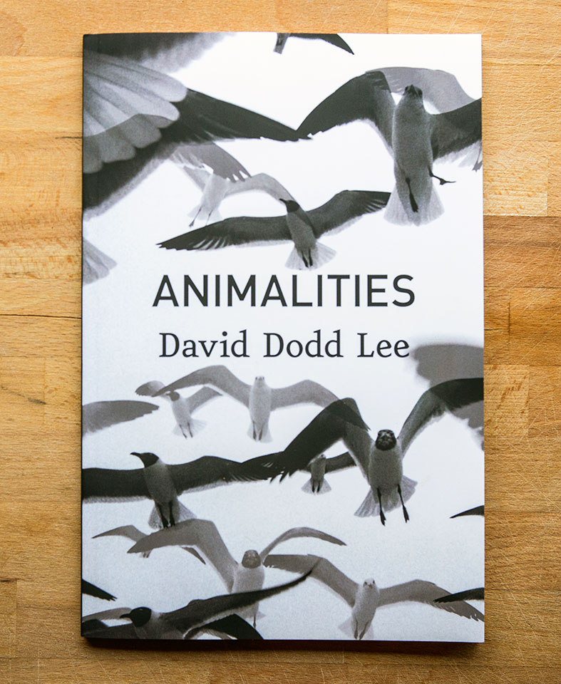 Animalities by David Dodd Lee